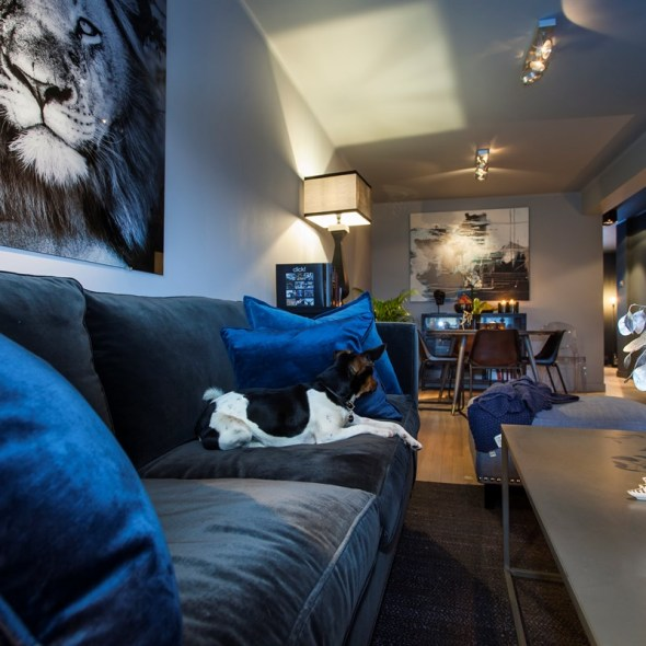 гостиная диван темные стены журнальный стол