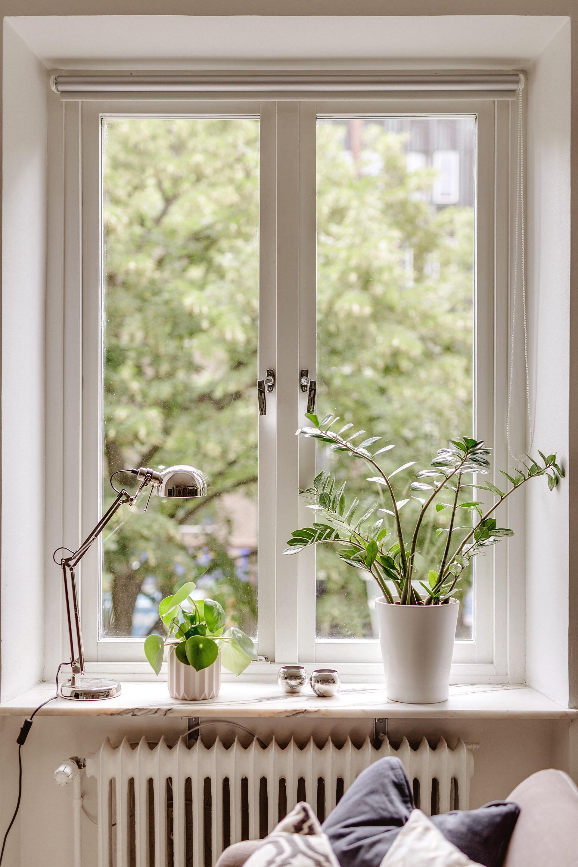 окно подоконник цветы