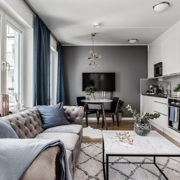гостиная кухня диван стол стулья телевизор
