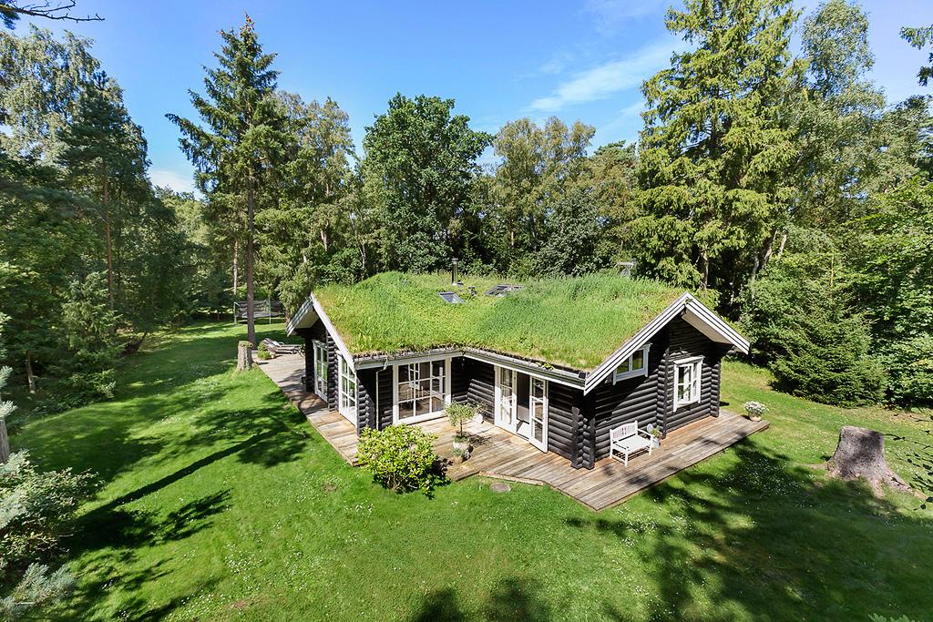 деревянный дом зеленая кровля отмостка деревянный настил