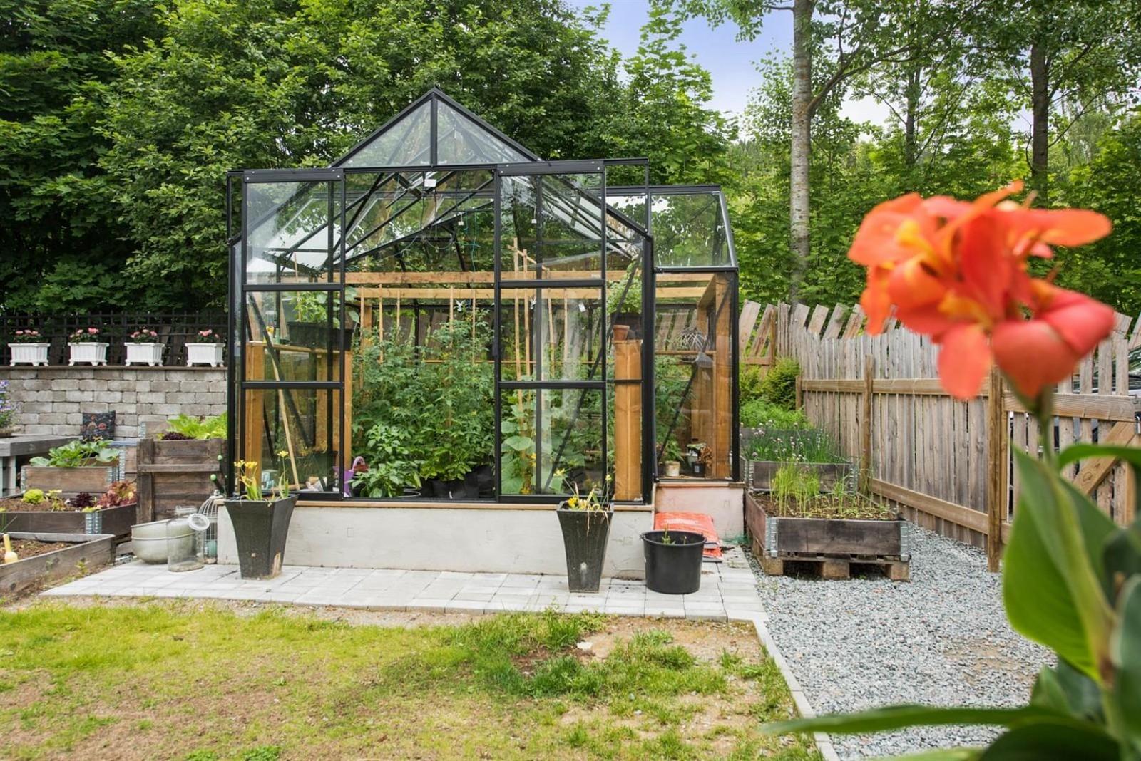 огород зимний сад теплица стекло