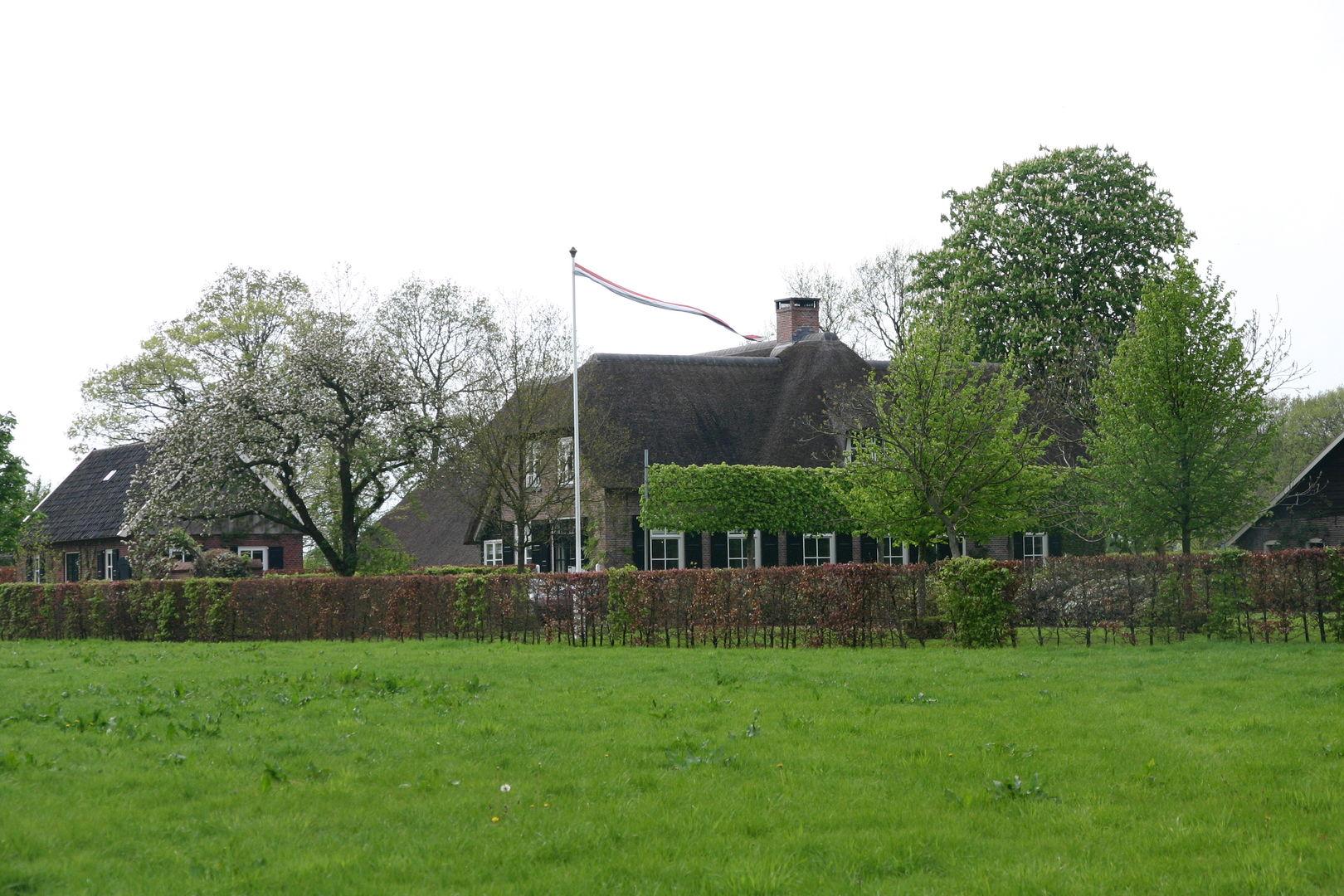 загородный дом участок ландшафт