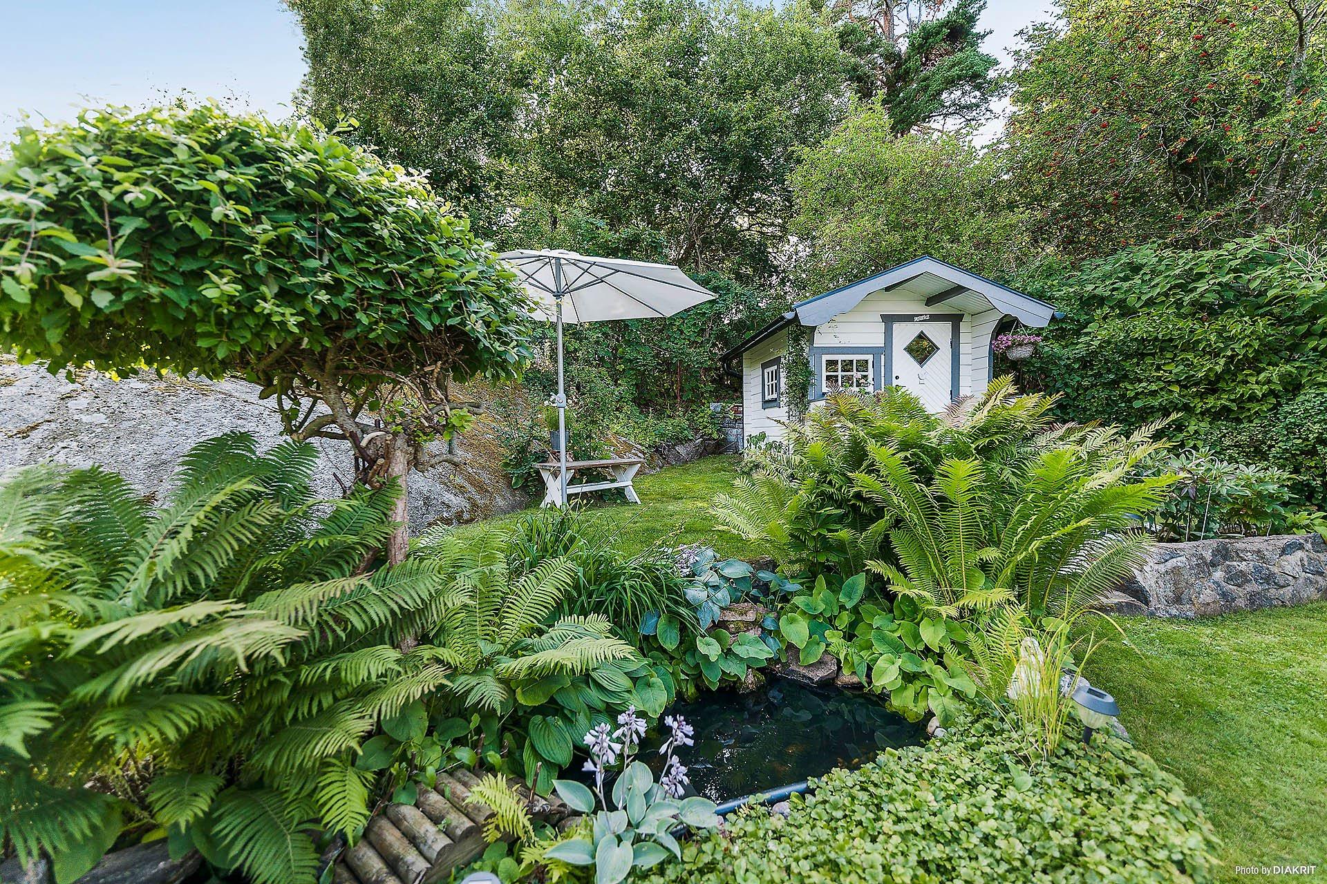 загородный дом газон пруд кустарники садовые растения зонт хозяйственный дом