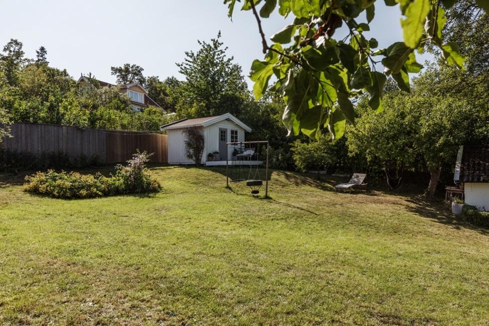 участок газон гостевой домик
