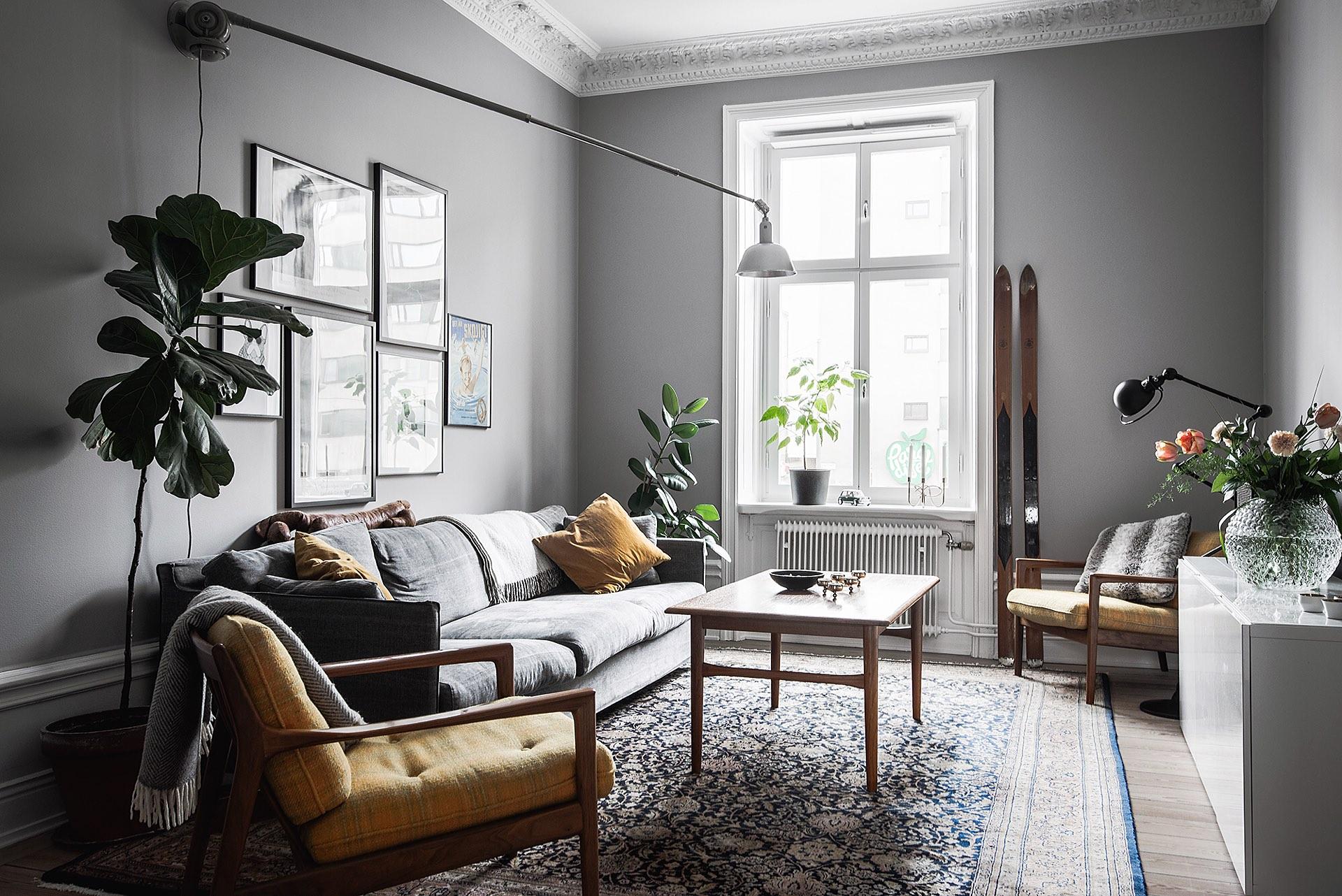 гостиная комната мебель серые стены ковер лыжи