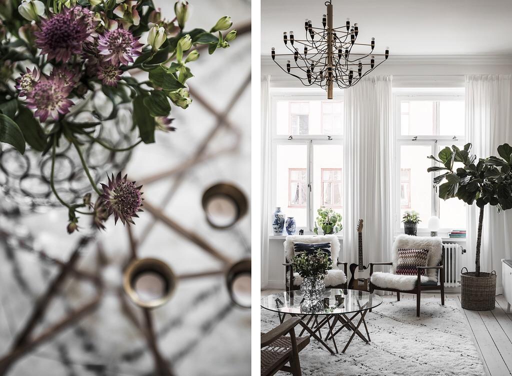 гостиная окна шторы мебель комнатное дерево фикус