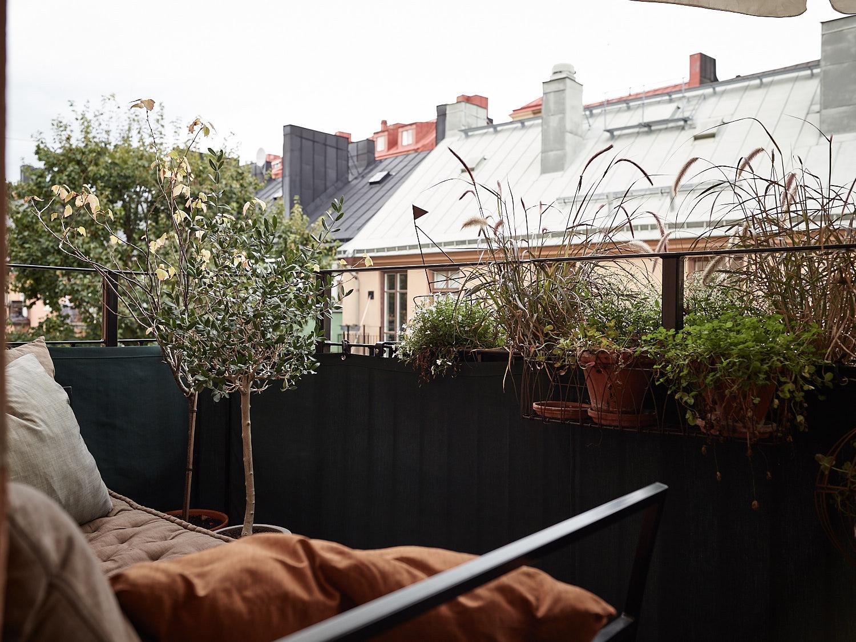 балкон ограждение растения