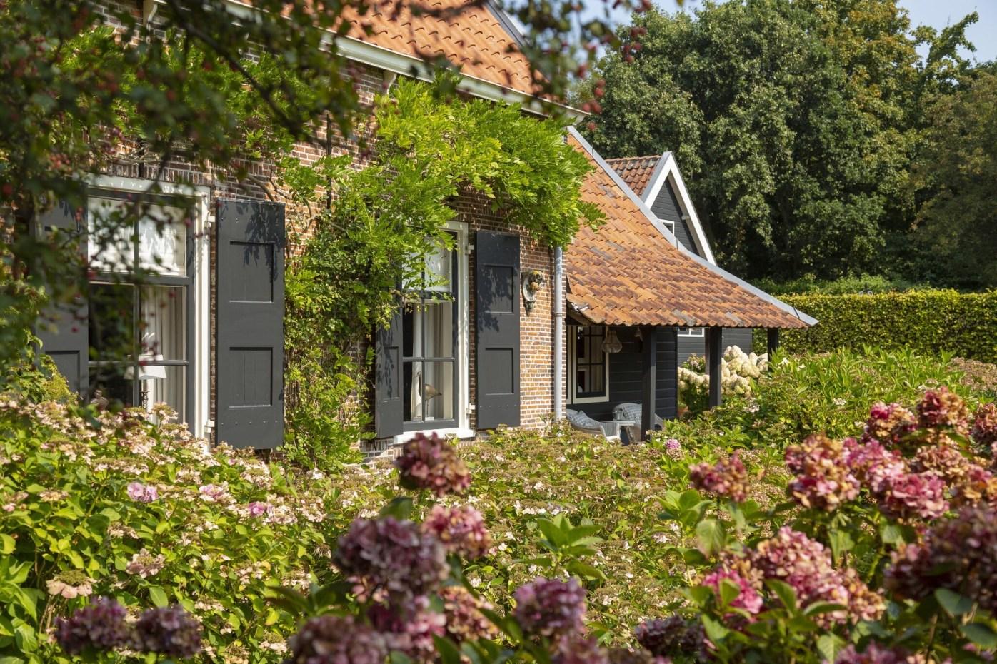 дом в нидерландах участок