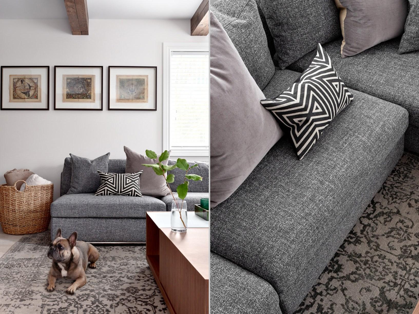 таунхаус в канаде диван гостиная собака