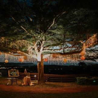 Nos stalactites lumineuses au Domaine des Palmiers