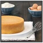 Receta De Torta Basica De Manteca [Paso A Paso]