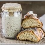 Como Hacer Levadura Natural Para Pan En Casa