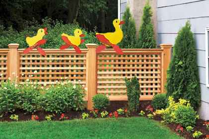 76 Affordable Backyard Privacy Fence Ideas