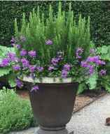 56 Fresh and Easy Summer Container Garden Flowers Ideas