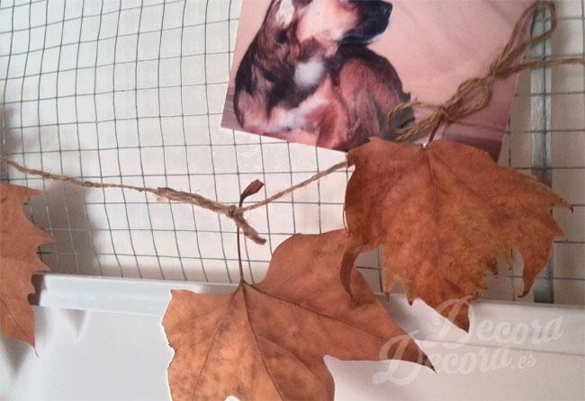 Idea decoración otoño