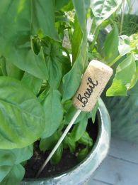 19. Cork as plant labels