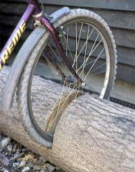20. Repurpose a fallen tree into a bike stand