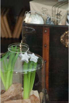 Navidad en los detalles de jacintos