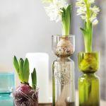 Hyacinth vase, House Doctor