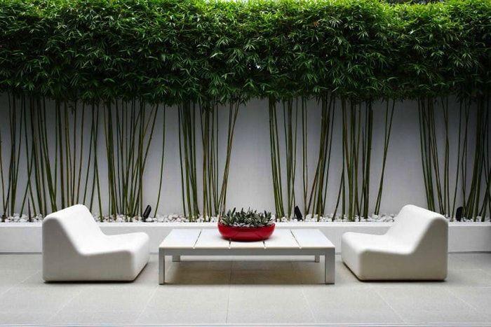estilo zen para un patio sin cesped