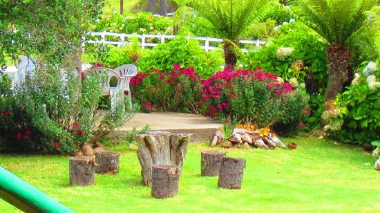 Pedras decorativas para Jardins  paisagismo fatec cotia