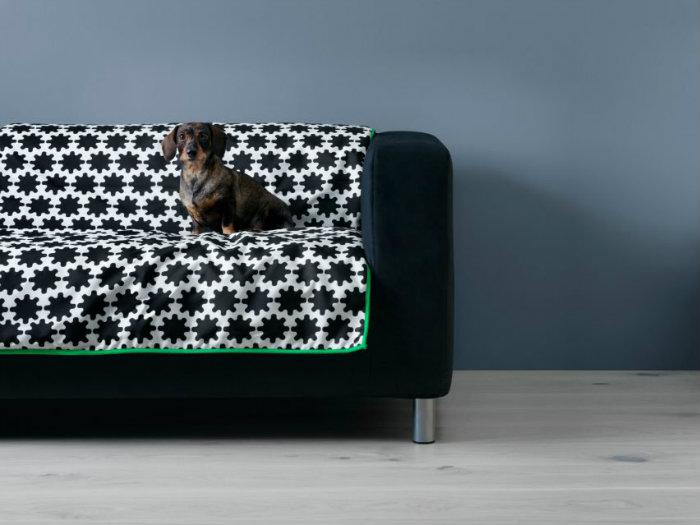 Προστατευτική κουβέρτα καναπέ. Αν δεν θέλεις να μάθεις στο κατοικίδιο να ανεβαίνει στον καναπέ είναι μια εξαιρετική λύση.
