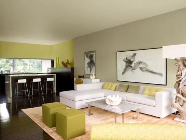 Stunning Paint Color Schemes Living Room Images - Home Decorating ...