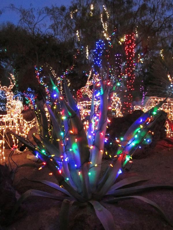 30 Wonderland Christmas Lights Decorations Ideas