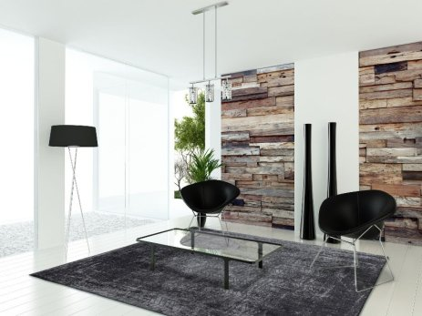 Modern sunny white living room interior with wooden wall