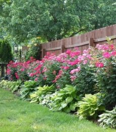 Design For Backyard Landscaping 82