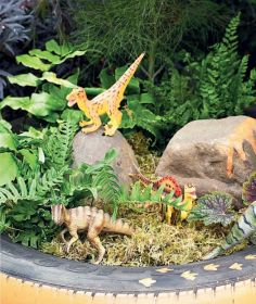 Magical And Best Plants DIY Fairy Garden Inspirations 19