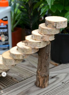 Magical And Best Plants DIY Fairy Garden Inspirations 3