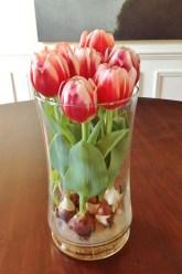 Tulips In Vase 25