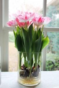 Tulips In Vase 44