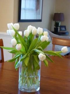 Tulips In Vase 58