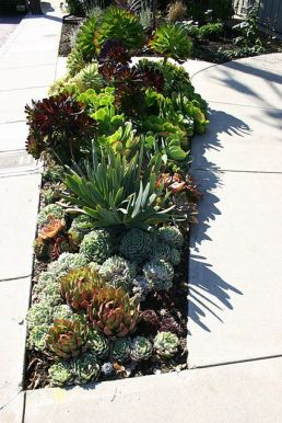 Flower Beds In Front Of House 14