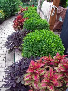 Flower Beds In Front Of House 147