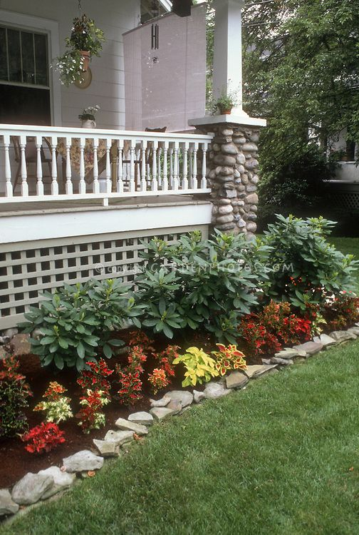 Coleus Garden Next To House Porch And Lawn Decoratoo