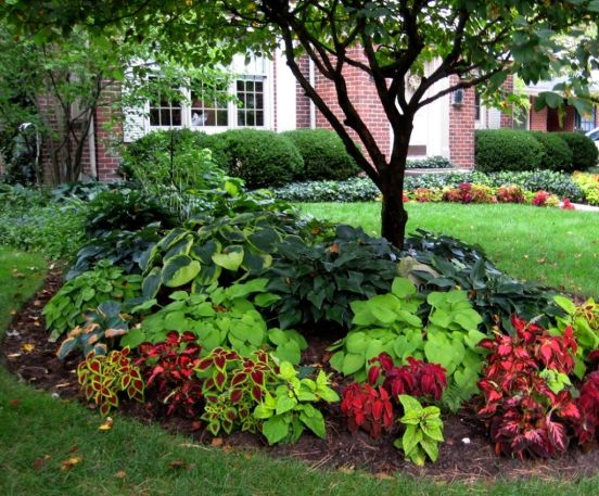 Flower Garden Ideas In Front Of House #Gallery4