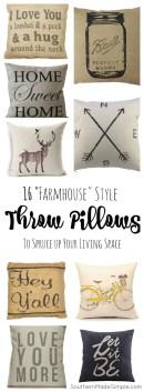 Living Room Pillows 124