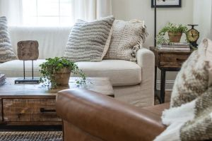 Living Room Pillows 45