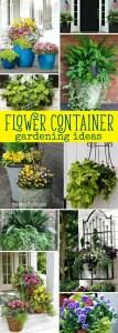 Container Gardening 48