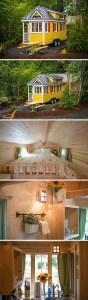 Tiny House Mansion 115