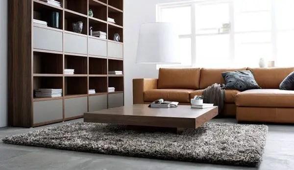 Elegant Contemporary Living Room 17