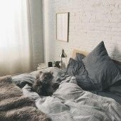 Elegant Cozy Bedroom 18