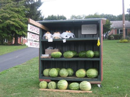 Farm Stand Ideas 10