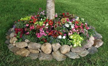 Flower Garden Ideas 7