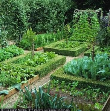 Potager Garden 21