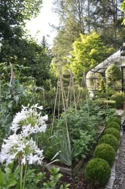 Potager Garden 22
