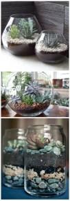 Succulents 10